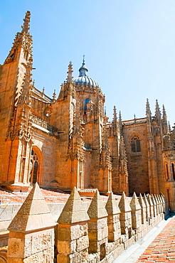 Cathedral. Salamanca, Castilla Leon, Spain.
