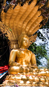 Golden Buddha statue with naga canopy Wat Si Muang Vientiane Laos PDR
