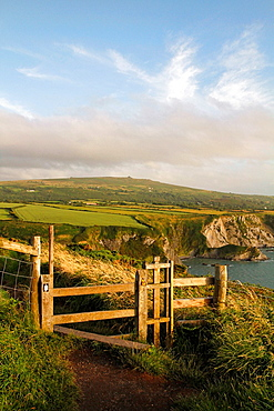 The North Pembrokeshire coast viewed from the coast path at Dinas Head between Newport and Fishguard, Wales, UK