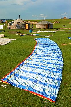Mongolia, Arkhangai province, Okhon valley, yurt assembly, transhumance