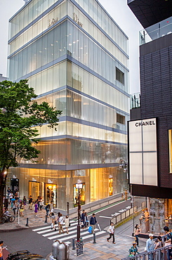 Dior Store by SANAA Sejima y Nishikawa Architects & Associates  And Chanel Store,in Omotesando street, Tokyo, Japan