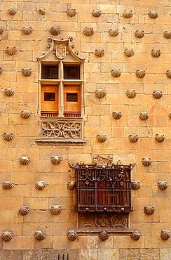 Detail,Casa de las Conchas, House of Shells,Salamanca,Spain