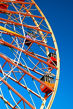 Mickey¥s Fun Wheel
