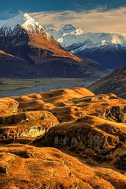 Mt Aspiring from tussock grass hills above Matukituki Valley, early moring light, near Wanaka, Otago