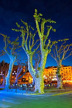 France, Corsica, Haute-Corse Department, La Balagne Region, Ile Rousse, Place Paoli, trees, dusk