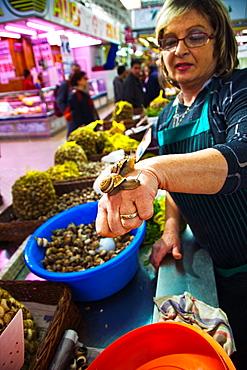 Snail stand in the Central Markett Valencia Comunidad Valenciana Spain