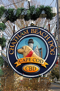 Sign for Chatham Beach Dog, a store with toys and treats for dogs, in Chatham, Cape Cod, Massachusetts