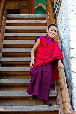 A buddhist novice monk in the stairs of Punakha Dzong, Punakha, Bhutan, Asia.