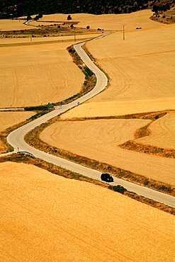 Between Winding Road in CalataÃ'azor cornfields. Soria. Castile and Leon. Spain.