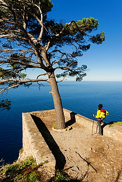 Des Pi lookout, viewpoint Niu des Corb, Valldemossa, Tramuntana, mallorca, Balearic Islands, Spain, Europe