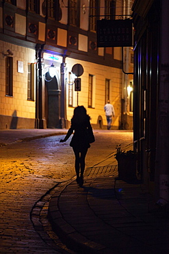 Vilnius Old Town by night