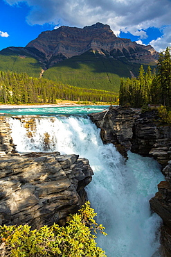 Athabasca Falls and the Canadian Rocky Mountains in the background, Jasper National Park, Alberta, Canada