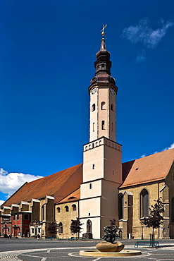 Former franciscan monastery, established in the 15th century, Zittau, administrative district Goerlitz, Saxony, Germany, Europe