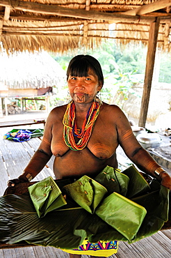 women offering dishes of fish wrapped in leaves, Embera native community living by the Chagres River within the Chagres National Park, Republic of Panama, Central America