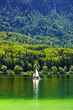 Sailboat into the Bohinj lake, in Bohinj, Triglav National Park, Gorica region, Slovenia, Balkans States