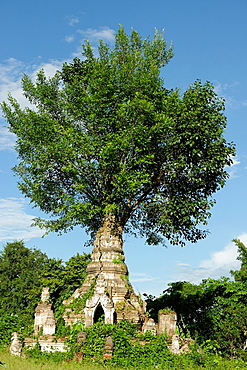 Buddhist monastery Hsipaw area Shan State Burma Republic of the Union of Myanmar.