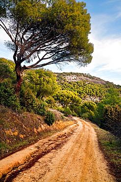 The Morunas Cebreros avila Castilla Leon Spain