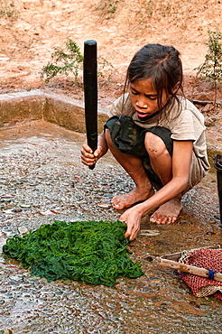 Ethnic Khmu girl cleaning river weed, Luang Nam Tha, Laos