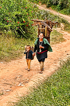 Ethnic Lanten woman and her son carrying wood, Luang Nam Tha, Laos