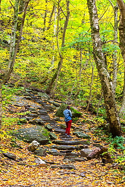 Lone hiker in the Mansfield National Forest, Vermont, USA