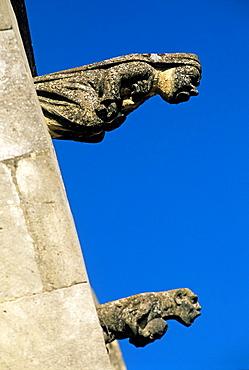 gargoyle of the Renaissance Castle of Madame de Sevigne, Drome department, region of Rhone-Alpes, France, Europe