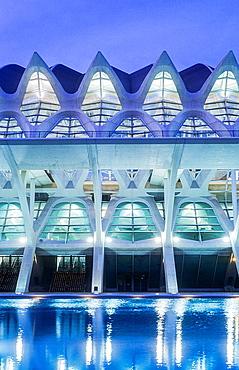 Detail of Principe Felipe Sciences Museum,City of Arts and Sciences, by S Calatrava Valencia Spain