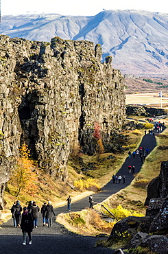 Tectonic Plates at Pingvellir National Park, Iceland