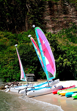 A trio of colorful small sailboats rest on the shore of a Caribbean beach