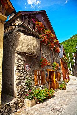 Unha  Naut Aran  Aran Valley  Pyrenees  Lerida  Lleida  Catalunya  Spain.