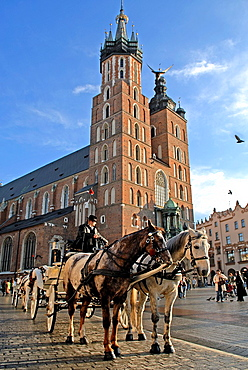 horse-drawn carriage in front of St. Mary's Basilica, Krakow, Poland, Central Europe