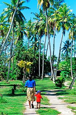 Denis island, Republic of Seychelles, Indian Ocean