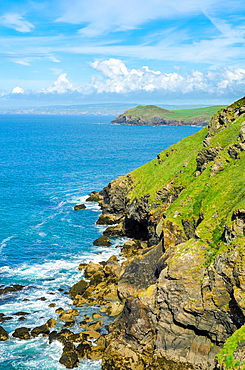 Carnweather Point near Port Quin, Cornwall, England.