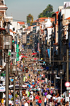 main shopping street in Porto, Portugal