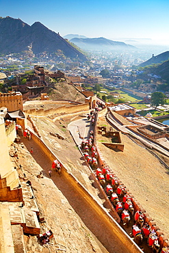 Elephants carrying tourists to the Amber Fort in Jaipur, Rajasthan, India.