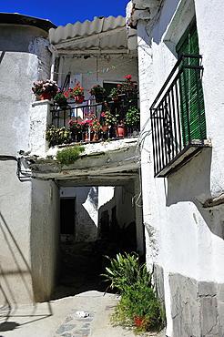 Popular architecture. Mecina-Fondales, Las Alpujarras. Granada, Spain