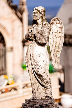 Angel praying, cemetery, Gouveia, Serra Da Estrela, Beira Alta, Portugal, Europe.