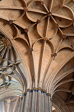 Ribbed vault of the New Cathedral, Salamanca, Region of Castilla y Leon, Spain, Europe.
