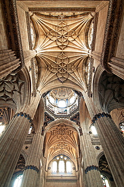 Ribbed vaults and pilasters of the New Cathedral, Salamanca, Region of Castilla y Leon, Spain, Europe.