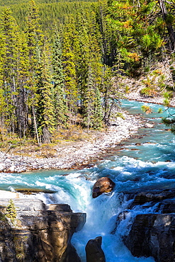 Sunwapta Falls and forest in the Jasper National Park, Alberta, Canada