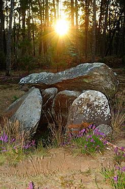 Dolmen of Pedra da Arca. Malpica de Bergantinos, Galicia, Spain.