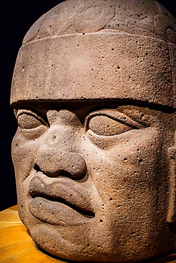 Olmec Giant Head, National Museum of Anthropology. Mexico City. Mexico.