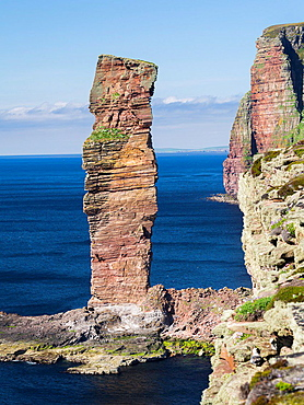 Old Man of Hoy, Orkney Islands, one of the icons of the Orkney islands. europe, central europe, northern europe, united kingdom, great britain, scotland, northern isles,orkney islands, June.