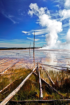 Midway Geyser Basin. Yellowstone National Park. Wyoming, USA.