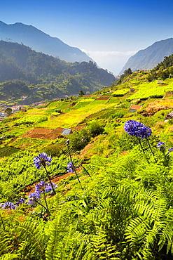 Landscape view near Sao Vicente, Madeira, Portugal.