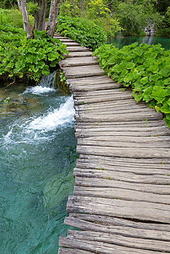 wooden pathway and lake, Plitvice Lakes National Park, Croatia.