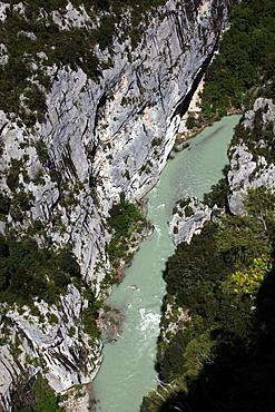 Verdon Gorge river canyon, Verdon Regional Natural Park, Provence-Alpes-Cote d'Azur, France.