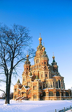 Russia, Near st, Petersburg, Petrodvorets, St, Peter and Paul Cathedral.