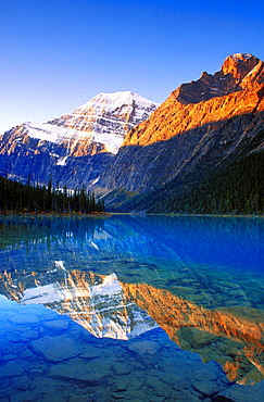 Dawn light on Mount Edith Cavell reflected in Cavell Lake, Jasper National Park, Alberta, Canada.