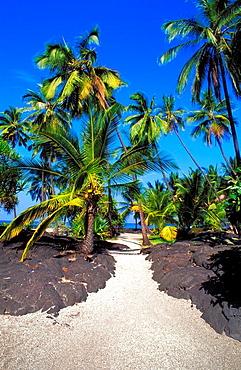 Sand path through lava field and palm trees at Pu'uhonua O Honaunau National Historic Park, Kona Coast, Hawaii USA.