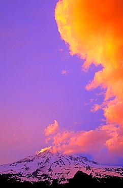 Evening light on vertical cloud formation over Mount Rainier, Mount Rainier National Park, Washington USA.
